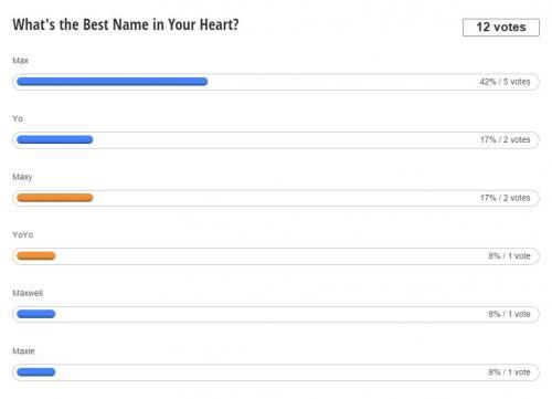 Facebook Poll.jpg
