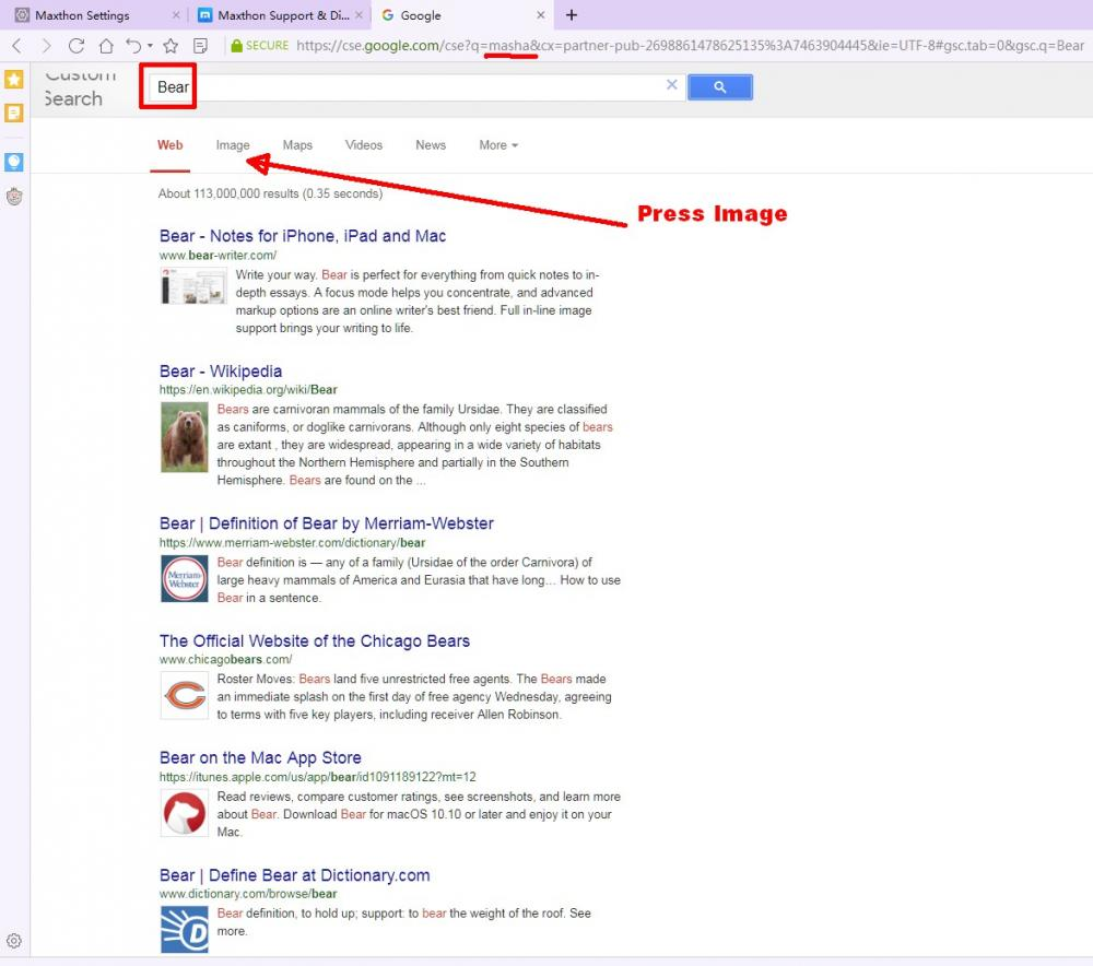 SearchBear.jpg