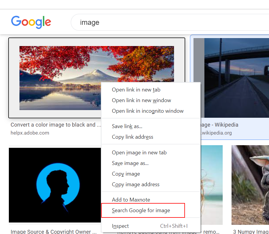 Maxthon Snap20211018195201.png